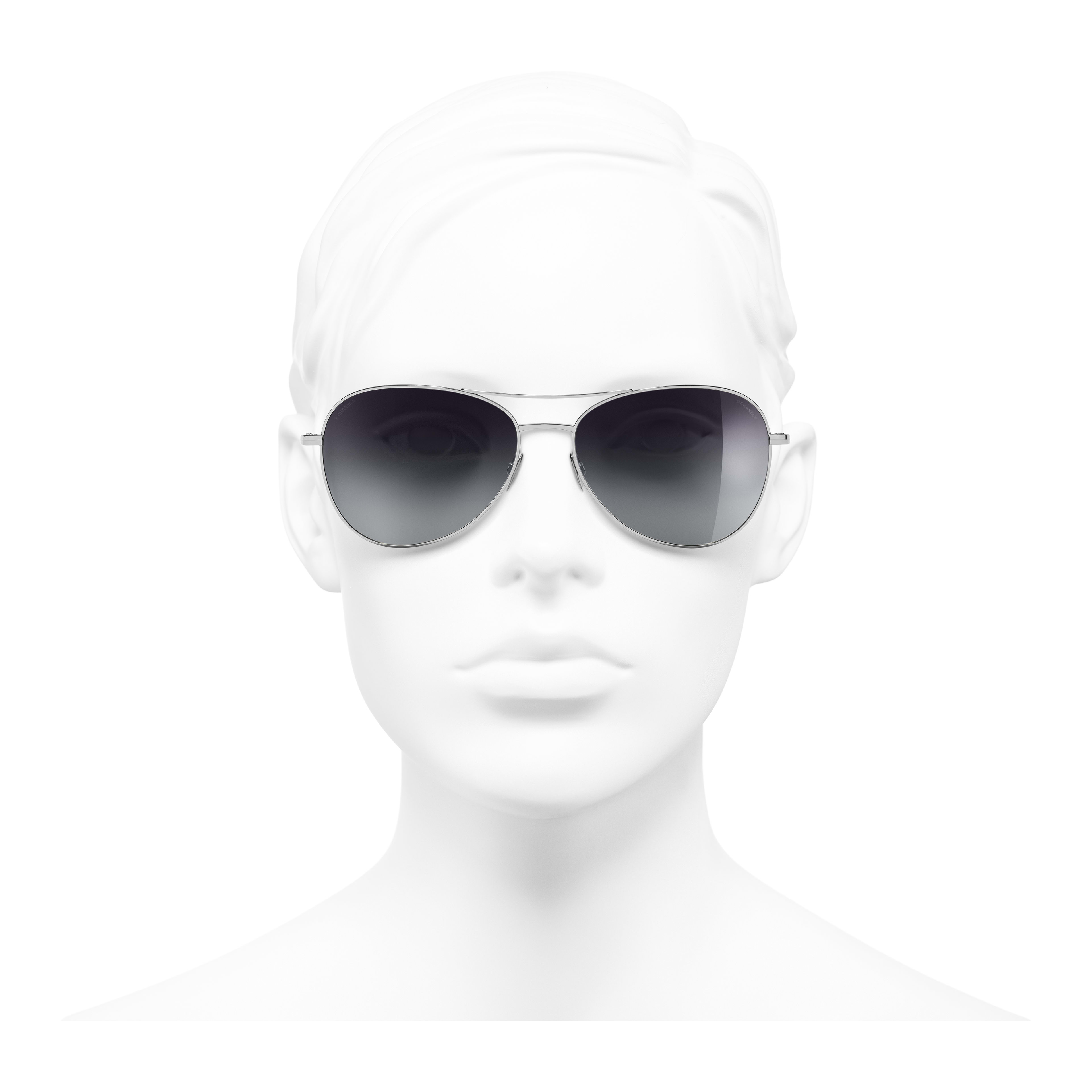 Pilot Sunglasses - Silver - Titanium - Worn front view - see full sized version