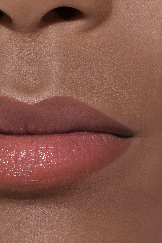 Application makeup visual 1 - LE ROUGE CRAYON DE COULEUR 27 - BOIS ROSE