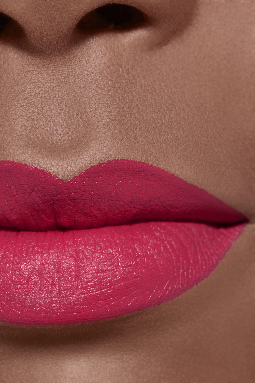 Application makeup visual 2 - LE ROUGE CRAYON DE COULEUR MAT 261 - EXCESS