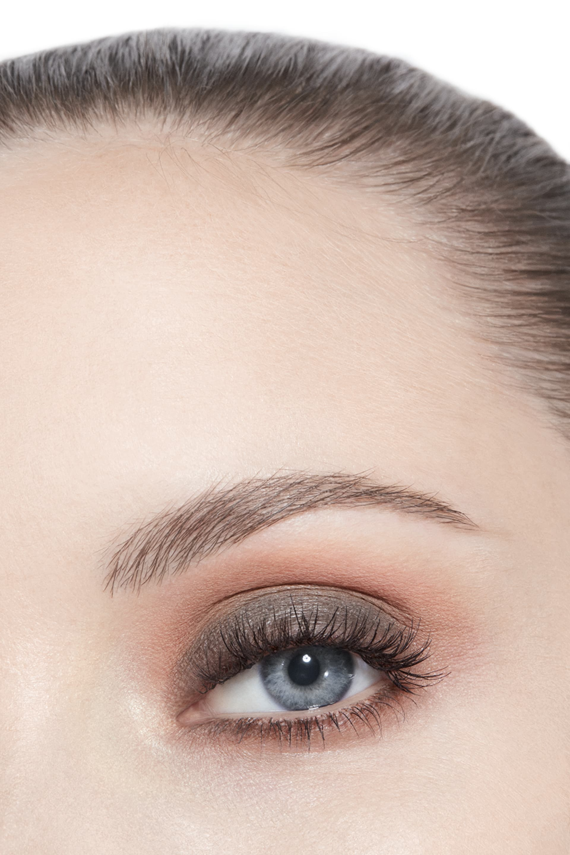 Application makeup visual 3 - LES 9 OMBRES