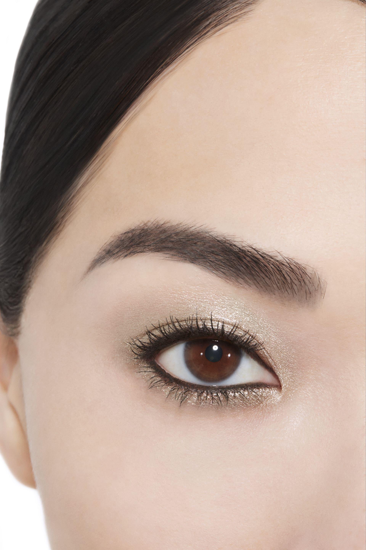 Application makeup visual 1 - OMBRE PREMIÈRE 38 - TITANE