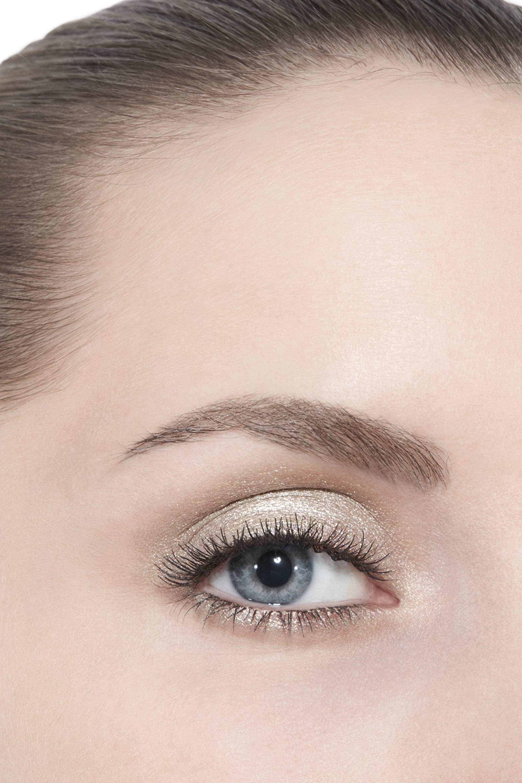 Application makeup visual 3 - OMBRE PREMIÈRE 38 - TITANE