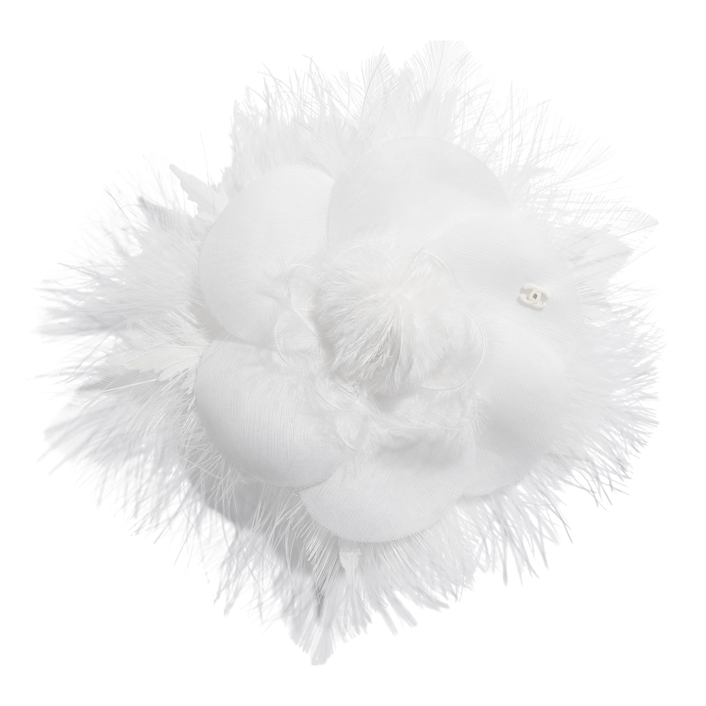 Camellia - White - Feathers - Default view - see standard sized version