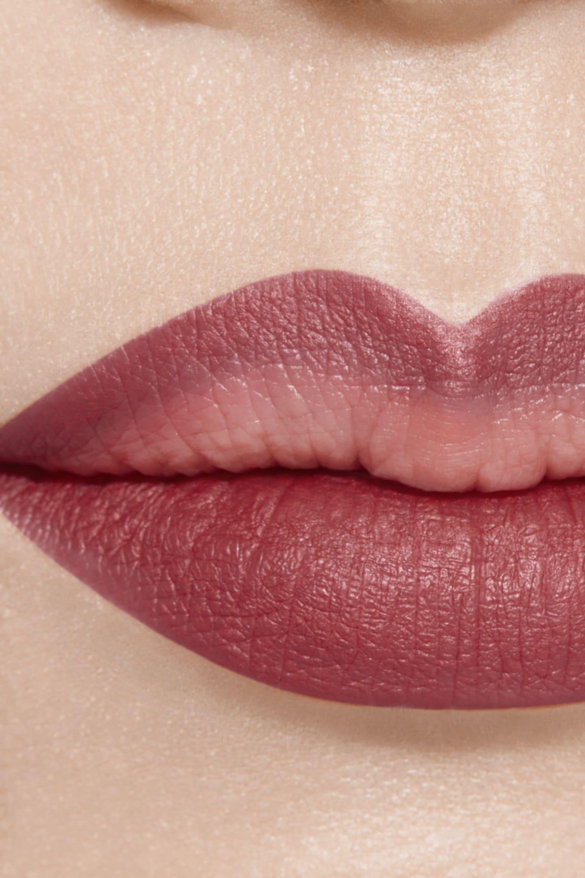 Application makeup visual 1 - LE CRAYON LÈVRES 172 - BOIS DE ROSE