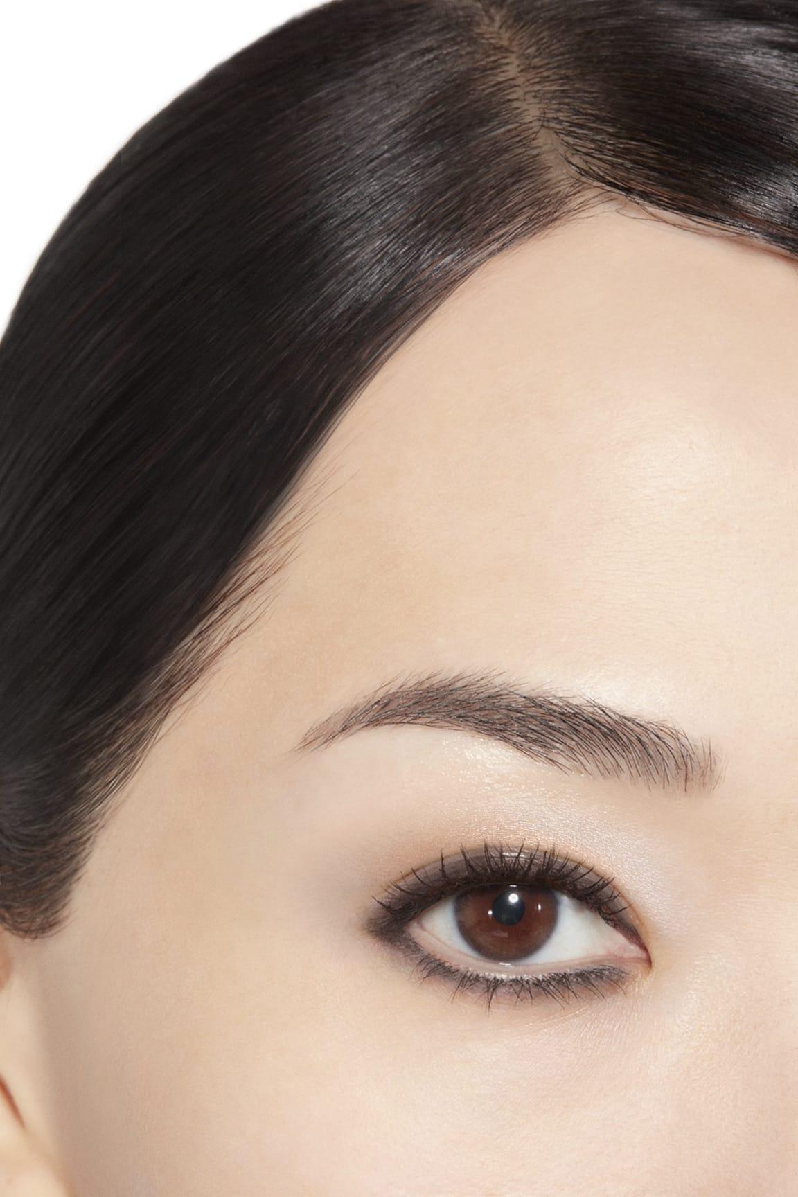Пример нанесения макияжа 1 - STYLO OMBRE ET CONTOUR 17 - CONTOUR GRAPHITE