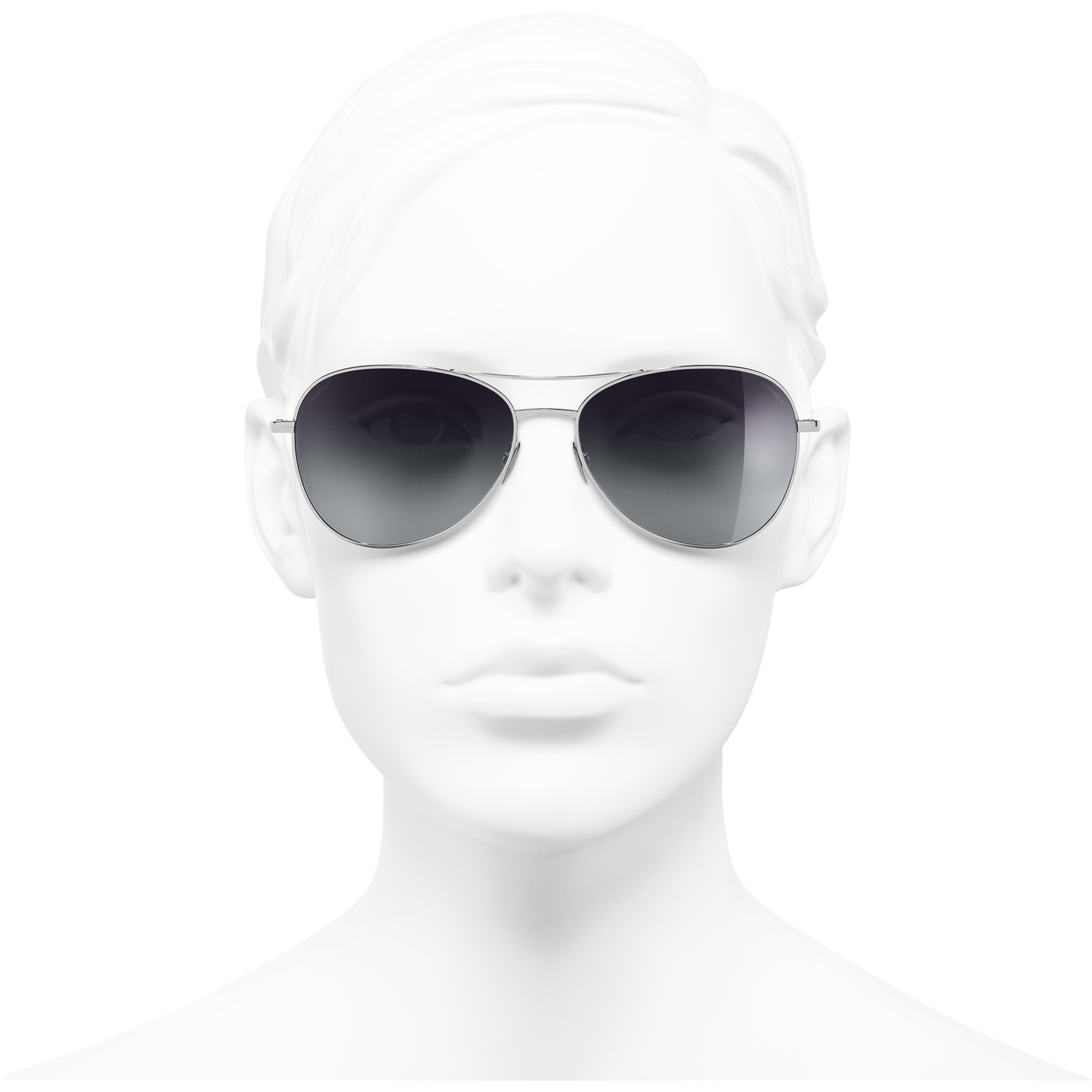 Pilot Sunglasses - Silver - Titanium - Worn front view - see standard sized version